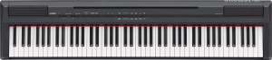 電子ピアノ【YAMAHA(ヤマハ)/P-105】